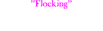 """Flocking"" Dallas & Fort Worth Since 2008"
